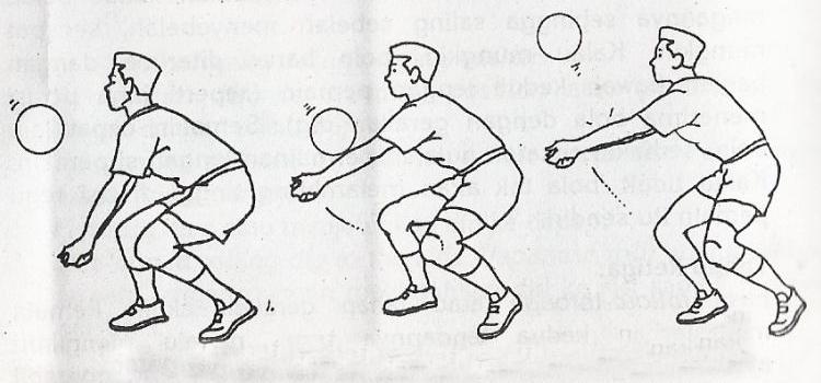 5 Teknik Dasar Permainan Bola Voli Yang Harus Dikuasai Pemain